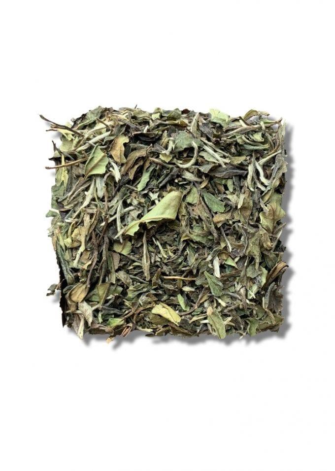 China White Tea PAI MU TAN